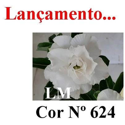 Cor Nº 624 LM Lançamento