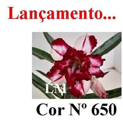Cor Nº 650 LM Lançamento