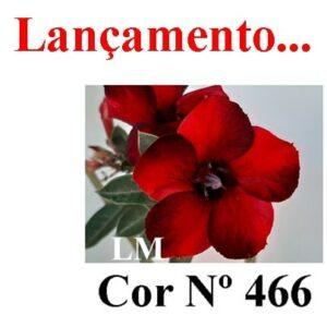 ENXERTO 3595 – 22cm